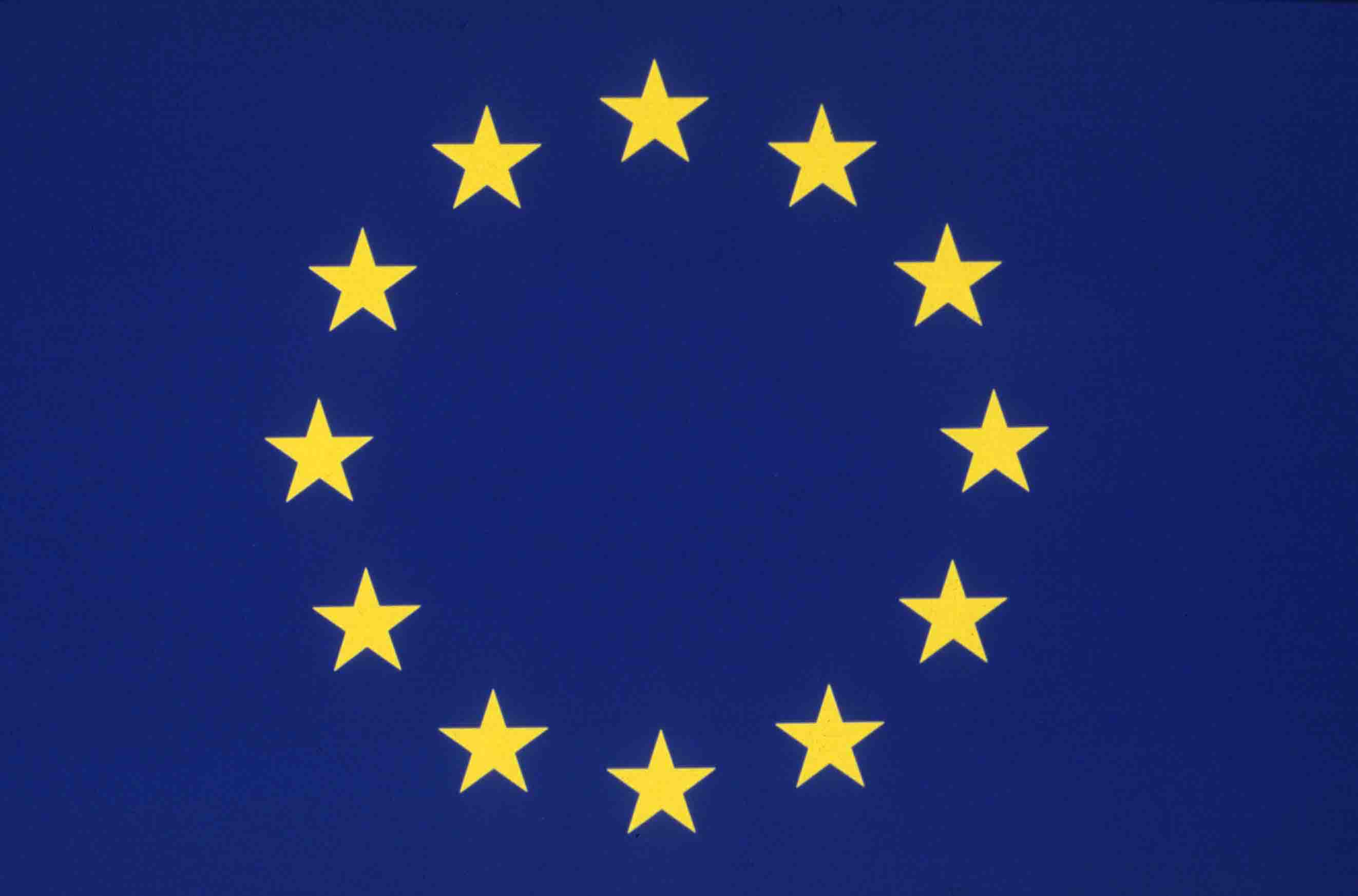 Statement of the Campaign Against the European Constitution