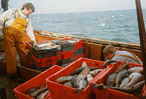 Audit of Facilities to Support Fishing Industry