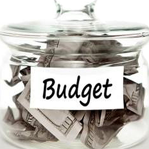 Council Budgets – but Don't Express an Opinion!